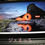 ThinkPd E595 15.6型 FHD IPS液晶モニター